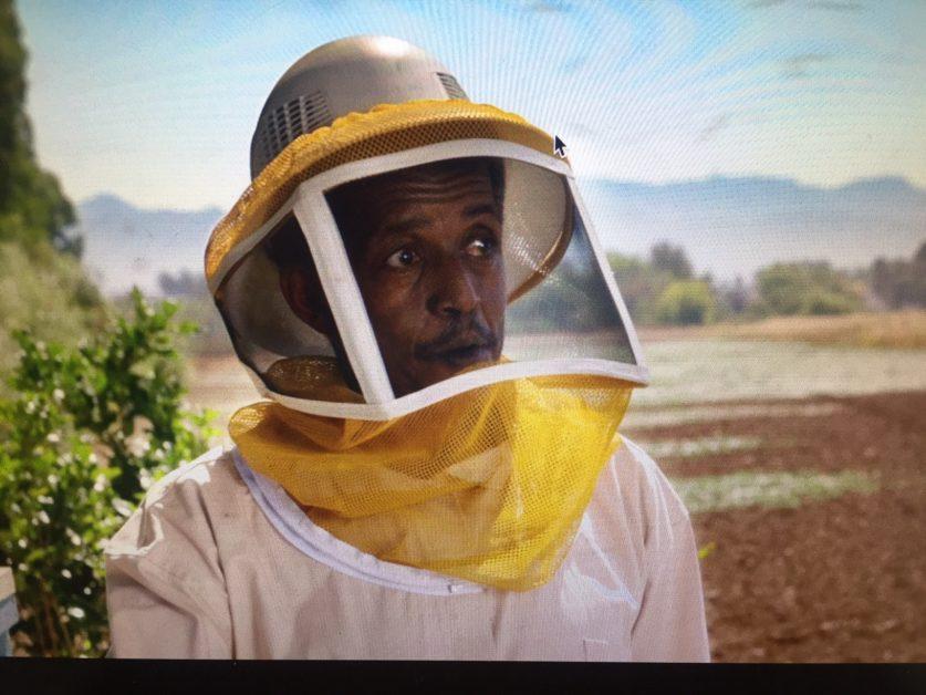 Bee Ally IMG_9692